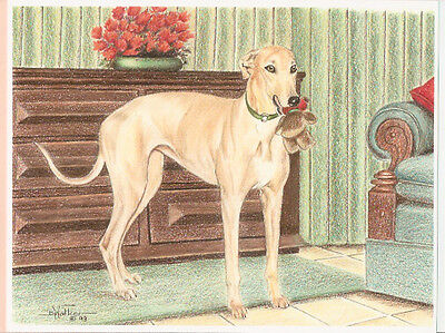 Whippet with Toy Open Edition Art Print by USA Artist Barbara Walker