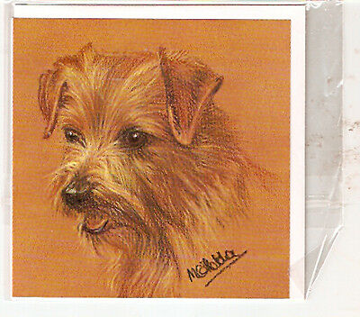 Norfolk Terrier Notecards Note Cards Pack of 2 by MC Fletcher LAST ONE
