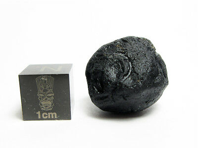 Bediasite Tektite 6.72g Stunningly Well Detailed Impactite