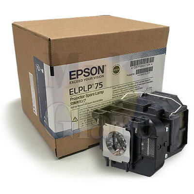 Genuine Projector Lamp Module for EPSON EB-1945W