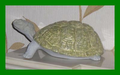 Rare Unique Maling Pottery Managers Garden Ornament Tortoise By Norman Carling
