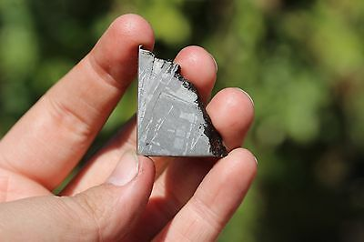 Muonionalusta meteorite etched part slice 14.8 grams