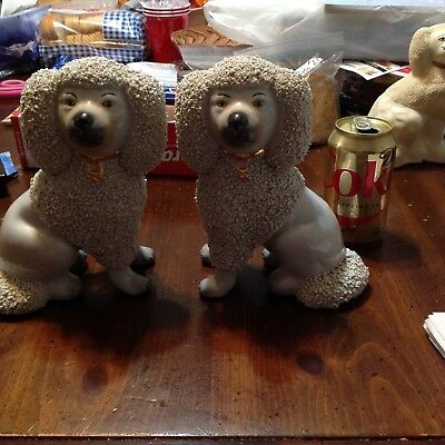 Vintage Pair Of Staffordshire Poodle Dogs / Fur Chips / Large Size / Beauties!!!