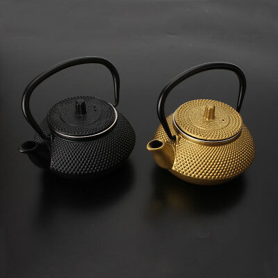 300ML Cast Iron Japanese Teapot With Infuser Strainer Water Kettle Pots Boiler