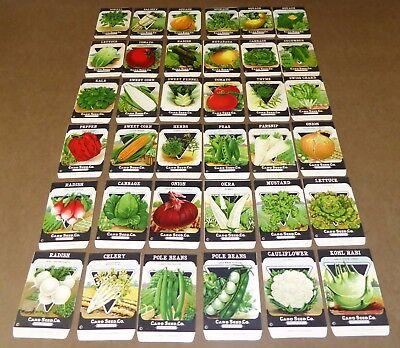 36 Vintage Seed Packet Big Lot Nos 1920 Garden Lithograph General Store Pack  #9