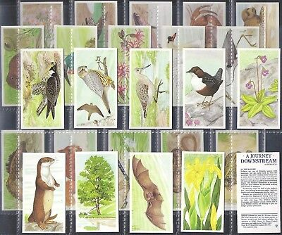 Brooke Bond-Full Set- A Journey Downstream (25 Cards) - Exc