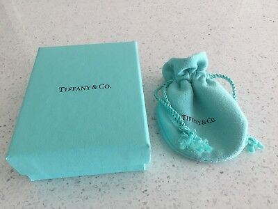 Tiffany & Co Pouch And Box