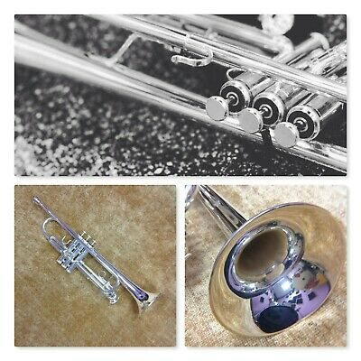 *** SILVER STUDENT Bb TRUMPET: NEW - MARCHING BAND JAZZ CONCERT ***