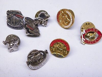 8 Old Moose Lodge Fraternal Pins