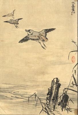 Japanese Mid 20Th Century Japanese Woodblock - Vögel Im Flug