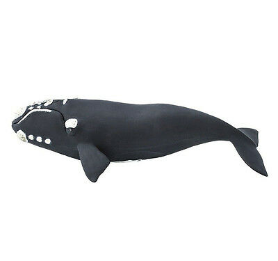 RIGHT WHALE Replica 204229 ~ NEW for 2017! FREE SHIP in USA w/$25 + Safari, Ltd.