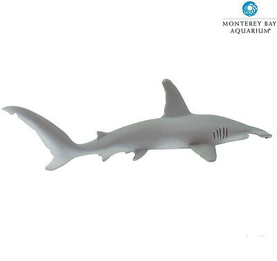 HAMMERHEAD SHARK ~NEW Version ~ 210702 ~Monterey Bay~FREE SHIP/USA w/$25+ SAFARI