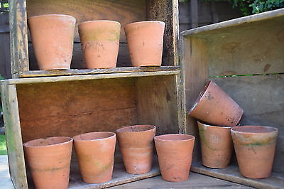 10 Victorian Handthrown Terracotta Flower Pots plant old vintage pot clay garden