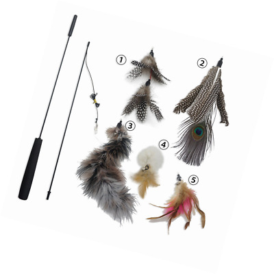 Z-Life Cat and Kitten Teaser Interactive Toy Feather Wand with Bell(Includes 5x