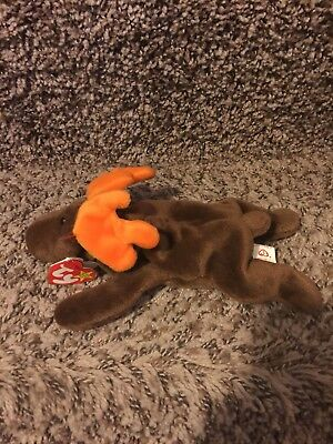 "1993 Ty ""Chocolate"" Moose Beanie Baby"