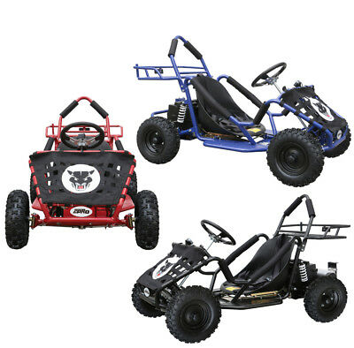NEW YOUTH KIDS Teens Outdoor Go Kart Electric Brushless Motor 1800w ...