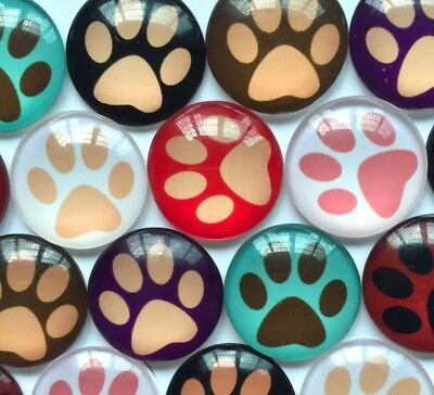 Handmade Glass Cabochons | Multi-coloured Animal Paw Design | Choice of Sizes