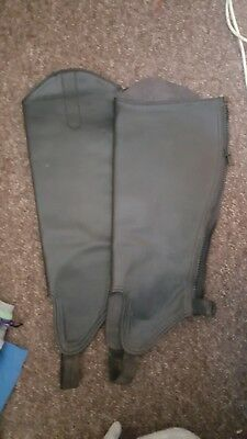 horse riding gaiters