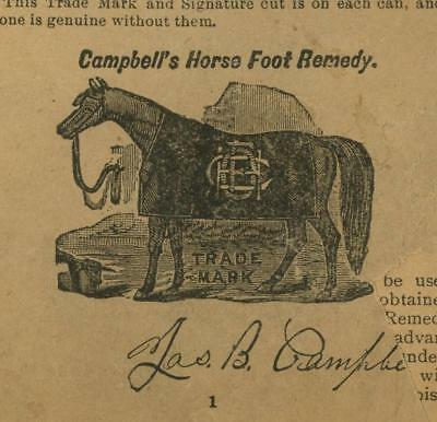 Vintage Campbell's Horse Foot Remedy 48p Booklet ca. 1901 3 Languages