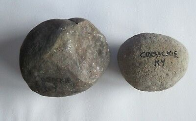 2 Ancient Native American Indian Hammer Stone Coxsackie NY Artifact ESTATE FIND