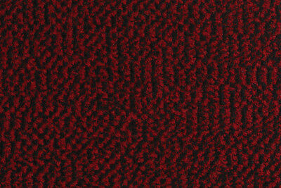 Bruce Starke Shannon 40x60 Red/Black