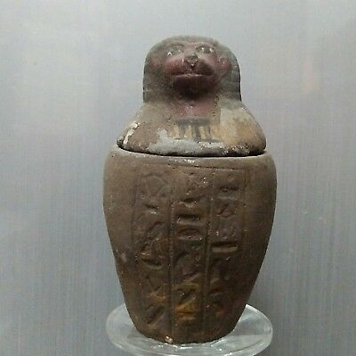 Rare Ancient Egyptian stone son of Horus Canopic Jar  Hapi (1500-1000 BC)
