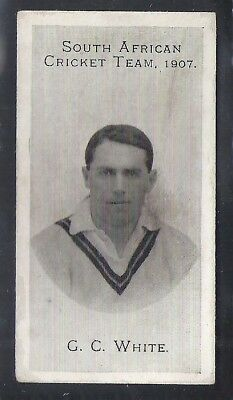 Taddy-South African Cricket Team 1907- G. C. White
