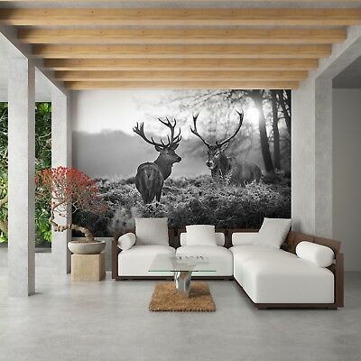 fototapete vlies tapete natur tiere hirsch im wald hirschgeweih schwarz wei eur 1 00. Black Bedroom Furniture Sets. Home Design Ideas