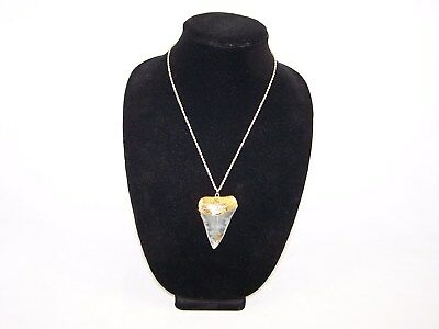 2.33 Inch GREAT WHITE Fossil Shark Tooth Teeth 18K Gold Plated Pendant