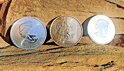 LOT 3 2013 Canada 1 Ounce .999 Argent Silver Wood Bison $5 Coin FREE SHIPPING!!!