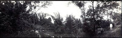 Vintage Panoramic Photograph of Java