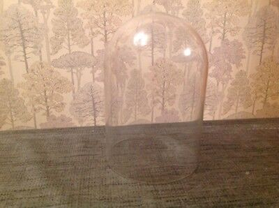 Vintage 400 Day Clock Glass Display Dome For Clocks Taxidermy 150x105mm