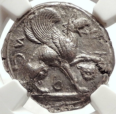 TEOS in IONIA Archaic Ancient 520BC Silver Stater GREEK Coin GRIFFIN NGC i66671