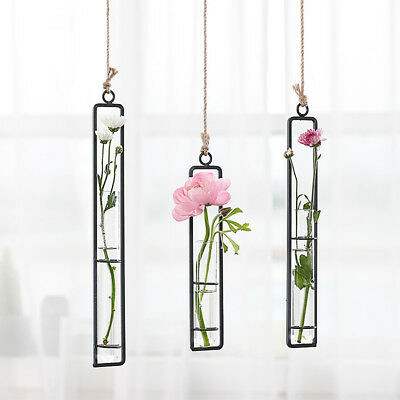 Wrought Iron Clear Glass Test Tube Wall Hanging Flower Vase Home Cafe Decor