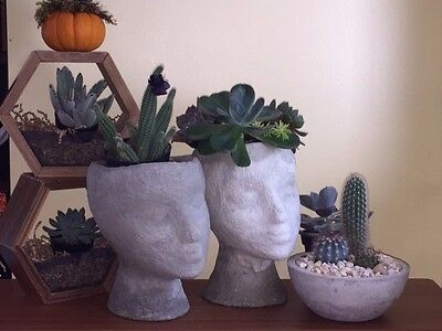 Head of a Lady Indoor/Outdoor Planter - Fun Novelty Flower Pot