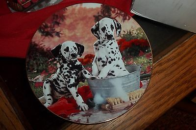 Christmas Dalmation  Plate 8 Inches,you Missed A Spot,hamilton Collection,1995