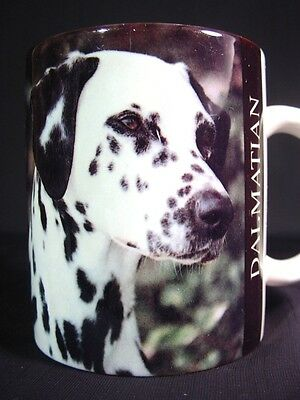 Dalmatian Dog Coffee Mug with Facts About Breed Great Holiday Gift Idea