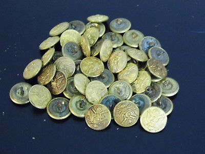 50 PC Lot Waterbury Button Co. Brass Tone Military Buttons 15/16""
