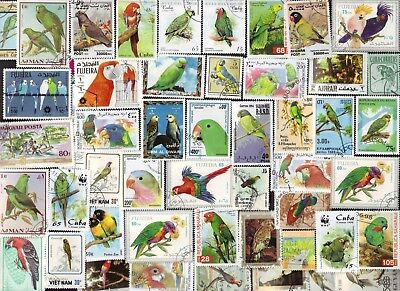 100 PARROTS ON Stamps  (BIRDS) All Different (c80)