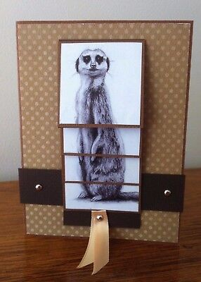 Meerkat Birthday Card with moving parts - Waterfall cascading card