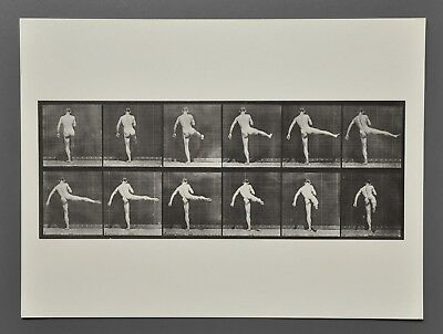 Eadweard Muybridge Ltd Ed Photo Heliogravure 40x30 Animal Locomotion 369 Dancing