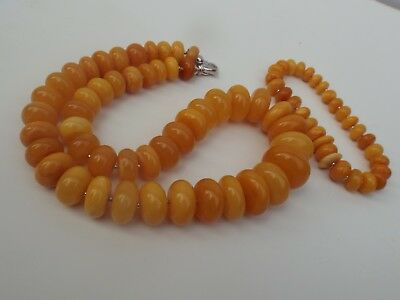 Natural Baltic amber yellow  necklace and bracelet set - 72.5 grams