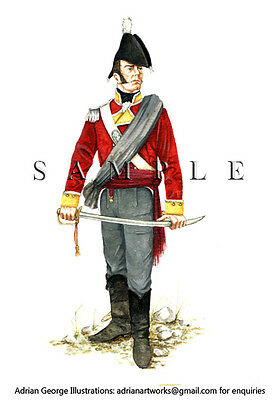 Napoleonic Print: Britain Officer 9th 'East Norfolk' 1810