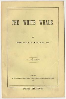 Lee, Henry. The White Whale. London, 1878.