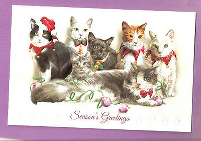 Festive Felines Cat Kitten Embossed Christmas Cards Box of 16 Juan Vela