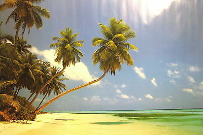 Landschaften Landscapes Poster Strand Beach Malediven Morgen Maledives Morning