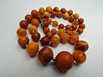 Natural Baltic amber necklace - 35.6 grams