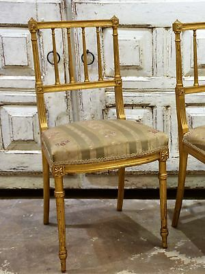 Pair of French Louis XVI style gilded chairs - small chairs