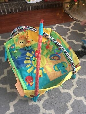 Bright Starts Sunny Safari Baby Infant Play Place Activity Gym GUC