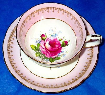 Hammersley & Co Pink Rose Forget-Me-Not Flowers Bone China Cup & Saucer